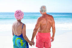 Cute mature couple holding hands on the beach Stock Photos