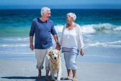 Cute mature couple holding hands walking the dog Stock Photo
