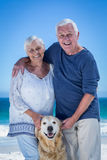 Cute mature couple petting their dog Royalty Free Stock Images