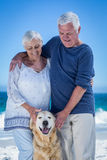 Cute mature couple petting their dog Stock Photos