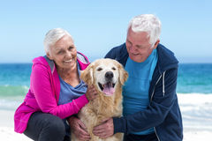 Cute mature couple petting their dog Royalty Free Stock Photo