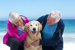 Cute mature couple petting their dog Royalty Free Stock Photography