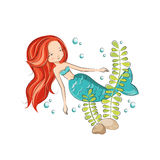 Cute mermaid. Mermaid is swimming. She is hostess underwater ocean world. Vector isolated on white background Stock Photography