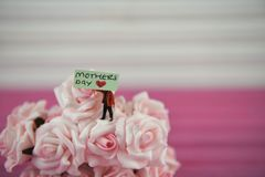 Mothers Day wording on a miniature sign placed in flowers of pink roses. Cute miniature person figurine holding a sign with the text Mothers Day and a love heart stock photography