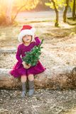 Cute Mixed Race Young Baby Girl Holds Tiny Christmas Tree. Cute Mixed Race Young Baby Girl Having Fun With Santa Hat and Christmas Tree Outdoors On Log stock image