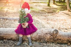 Cute Mixed Race Young Baby Girl Holding a Christmas Tree. Cute Mixed Race Young Baby Girl Having Fun With Santa Hat and Christmas Tree Outdoors On Log royalty free stock images