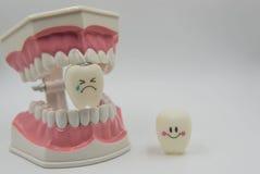 Cute modelo juega los dientes en odontología en un fondo blanco Imágenes de archivo libres de regalías