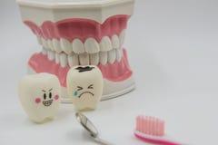Cute modelo juega los dientes en odontología en un fondo blanco Imagenes de archivo