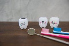 Cute modelo juega los dientes en odontología en un fondo de madera del gris de la tabla y de la pared Imagen de archivo libre de regalías
