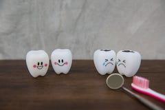 Cute modelo juega los dientes en odontología en un fondo de madera del gris de la tabla y de la pared Imagenes de archivo