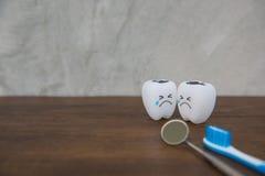Cute modelo juega los dientes en odontología en un fondo de madera del gris de la tabla y de la pared Imágenes de archivo libres de regalías