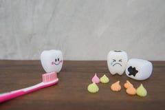Cute modelo juega los dientes en odontología en un fondo de madera del gris de la tabla y de la pared Fotografía de archivo libre de regalías