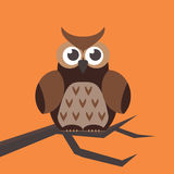 Cute modern bright cartoon owl expression animal character comic funny doodle behavior bird and little colorful emotion Stock Photography