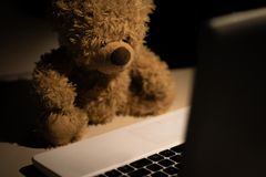 A cute and modern teddy bear stock photography