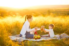 Cute mom and little son playing with my teddy. Mother and son feeding teddy bear on a picnic.  royalty free stock photos