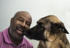 Cute moment between an African American man and his German Shepherd dog who is giving kisses. On green background royalty free stock images