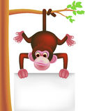 Cute monkey and blank sign Royalty Free Stock Images