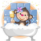 Cute Monkey Royalty Free Stock Photo
