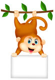 Cute monkey cartoon with blank sign Stock Photos