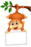 Cute monkey cartoon with blank sign Royalty Free Stock Photography