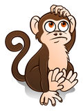 Cute monkey Royalty Free Stock Images