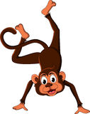 Cute monkey cartoon expression Stock Images