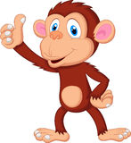 Cute monkey cartoon giving thumb up Royalty Free Stock Photo