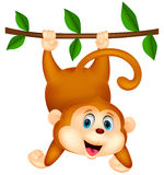 Cute monkey cartoon hanging Stock Images