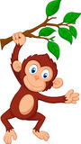 Cute monkey cartoon hanging vector illustration