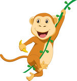 Cute monkey cartoon hanging Royalty Free Stock Image