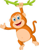 Cute monkey cartoon hanging Royalty Free Stock Photography