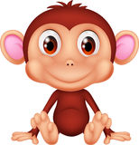 Cute monkey cartoon Royalty Free Stock Images