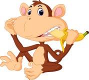Cute monkey cartoon. Illustration of funny Monkey eat banana Stock Photos