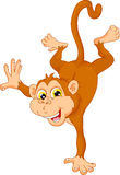 Cute monkey cartoon standing on his hand Royalty Free Stock Photo