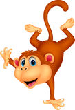 Cute monkey cartoon standing in its hand Stock Images