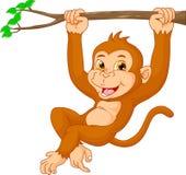 Cute monkey cartoon. Vector illustration of Cute monkey cartoon Stock Images