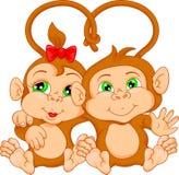Cute monkey couple cartoon Stock Image