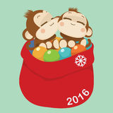 Cute monkey couple. Happy New Year 2016. Vector Illustration Stock Photos