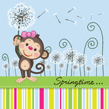 Cute Monkey with dandelion Royalty Free Stock Photo