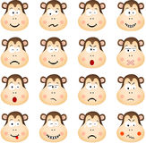 Cute monkey with different expressions Royalty Free Stock Image