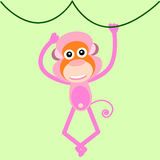 Cute  monkey Royalty Free Stock Photos