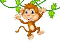 Cute monkey hanging giving thumb up Stock Photography