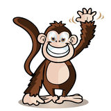 Cute monkey Royalty Free Stock Photography
