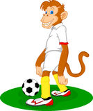 Cute monkey playing soccer ball Stock Photo