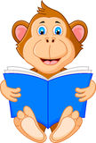 Cute monkey reading book Royalty Free Stock Image