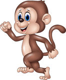 Cute monkey running isolated on white background Stock Photos