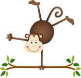 Cute monkey on a tree Stock Photos