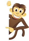 Cute monkey and white blank Royalty Free Stock Photos