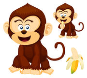 Cute monkeys Royalty Free Stock Photography
