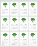 Cute monthly broccoli calendar 2019. Funny leafy calendar 2019 year with happy cartoon broccoli. Week starts on Sunday royalty free illustration